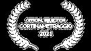 cortinametraggio film festival, film festival, official selection, shortsfit, distribución cortos, short film distribution, distribuzione cortometraggi,